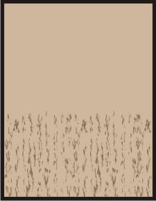 backgroundpetsym3.jpg
